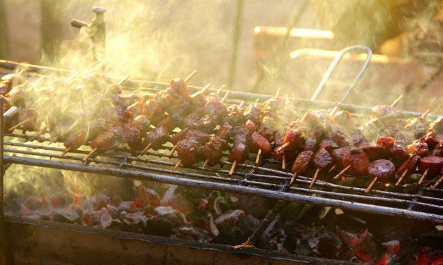 Rola dodatków wprodukcji mięsa dogrillowania