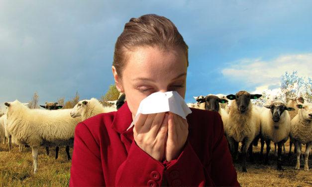 Alergeny w przetworach mięsnych – część i: alergeny pochodzenia zwierzęcego