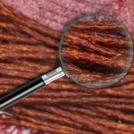 Bezpieczeństwo żywieniowe wyrobów mięsnych