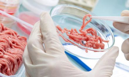 Techniki obróbki gwarantujące wysoką jakość produktów wprzemyśle mięsnym priorytetem na2019 rok