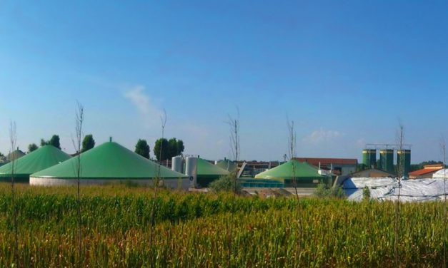 Agroenergia – nowy program NFOŚiGW dla rolników