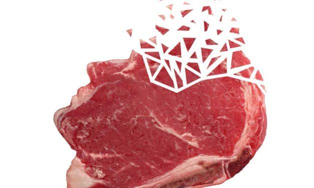 Znaczenie mięsa wewolucji człowieka